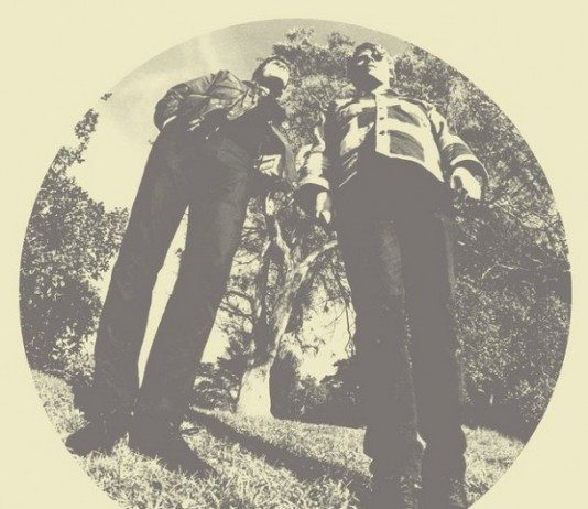 Critica Hair de Ty Segall and White Fence | HTM