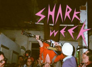 Recomendamos: Shark Week