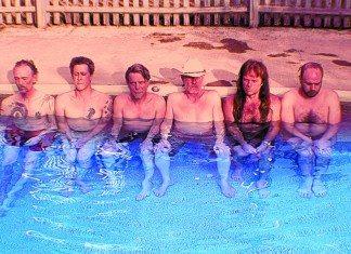 Swans en una piscina