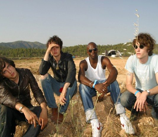 The Libertines en el campo