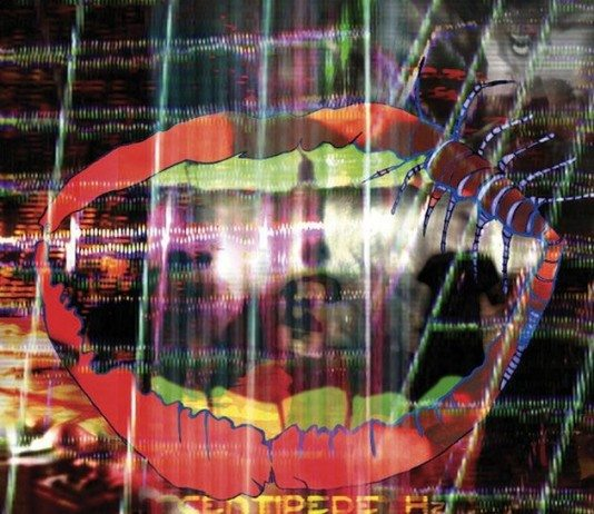 Critica Centipede Hz de Animal Collective | HTM