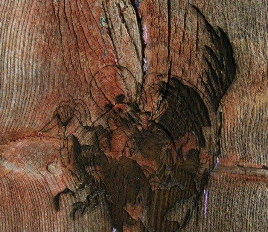 Avey Tare's Slasher Flicks Enter the Slasher House portada